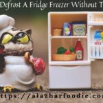 How Do You Defrost A Fridge Freezer Without Turning It Off