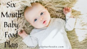 Six-month baby food plan