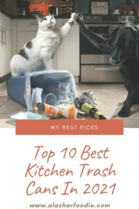 Top 10 Best Kitchen Trash Cans In 2021